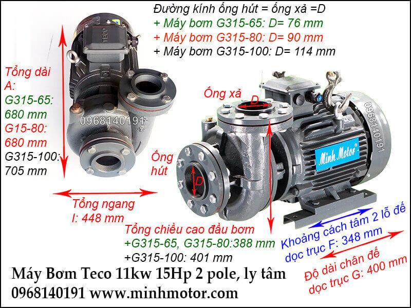 Máy bơm Teco 15 ngựa có mã G315-65, G315-80, G315-100