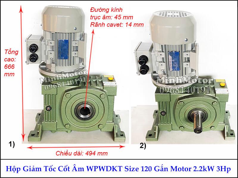 Motor giảm tốc cốt âm trục ngang