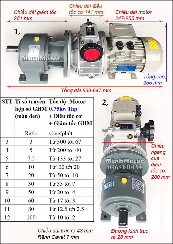 Thông số kỹ thuật motor giảm tốc wansin thay đổi tốc độ 0.75kw 1hp