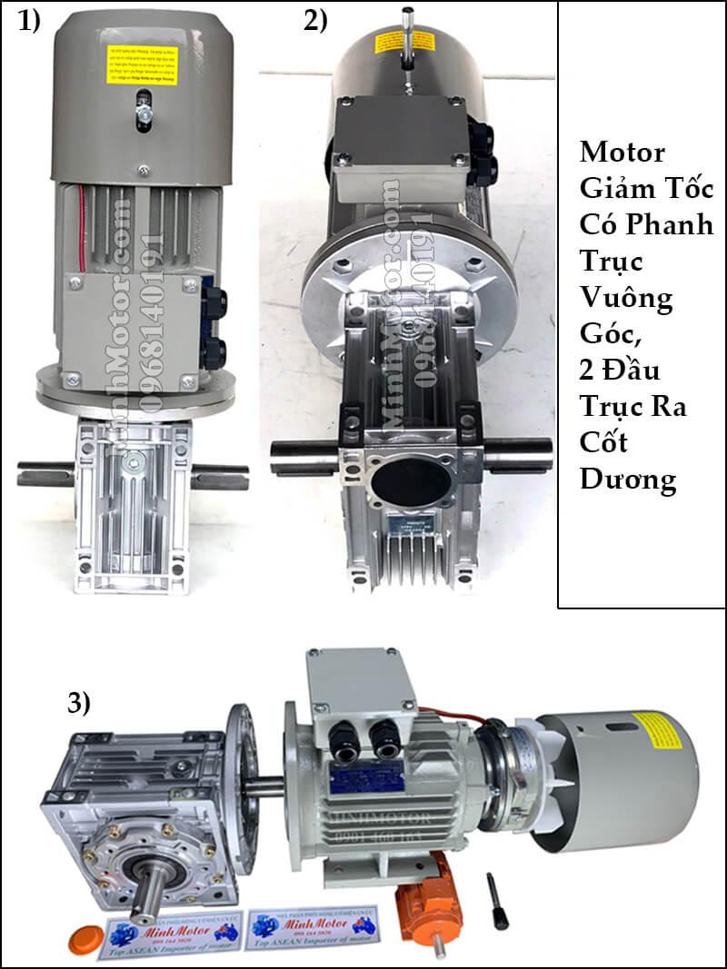 Motor giảm tốc có thắng từ 2 đầu trục ra cốt dương