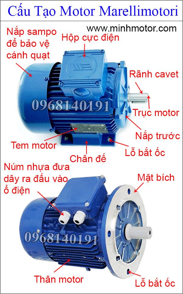 Cấu tạo Marellimotori motor điện 3 pha