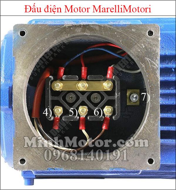 Đấu điện MarelliMotori motor