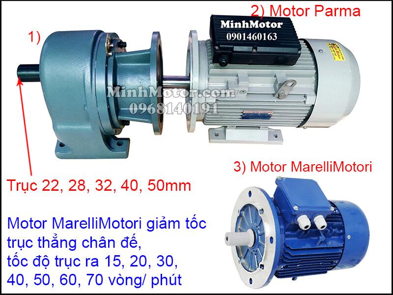 Động cơ điện MarelliMotori giảm tốc trục thẳng