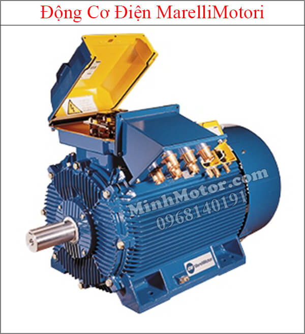 MarelliMotori motor