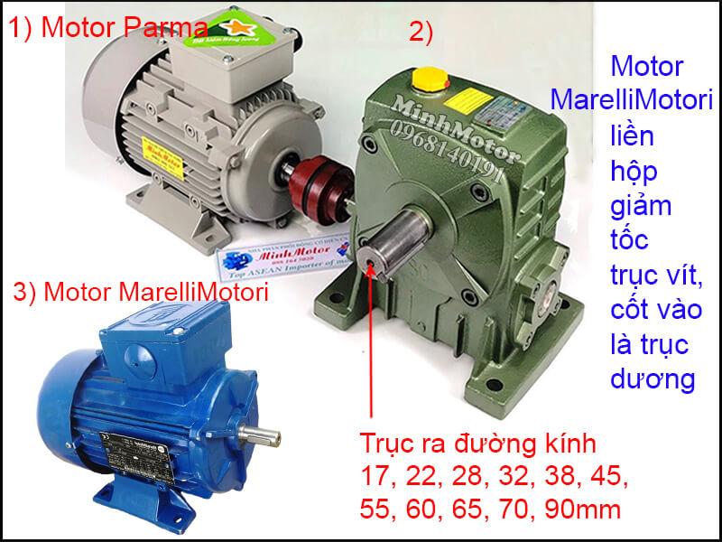 Motor MarelliMotori 3 Pha chân đế lắp đặt khớp nối