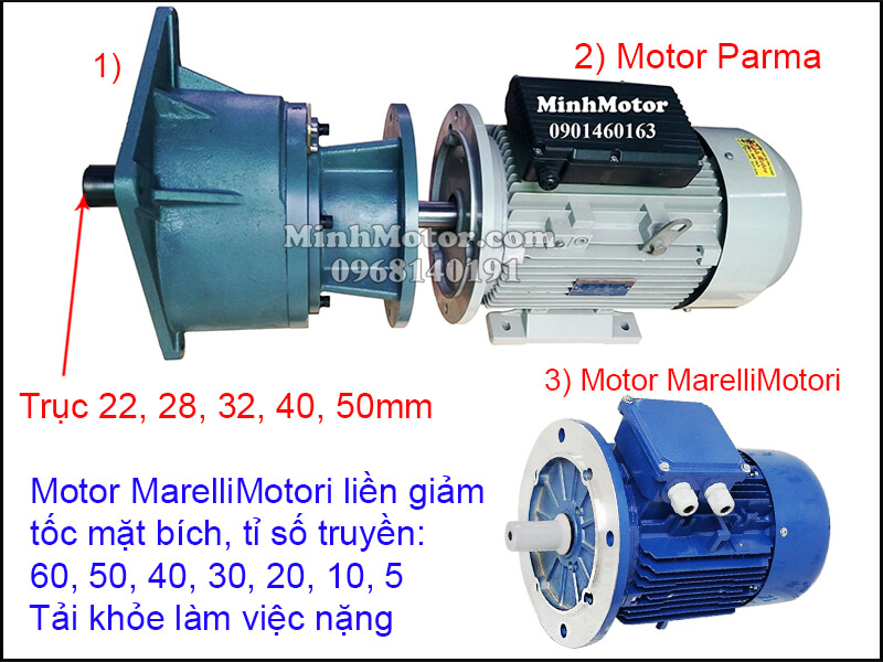 MarelliMotori motor giảm tốc trục thẳng