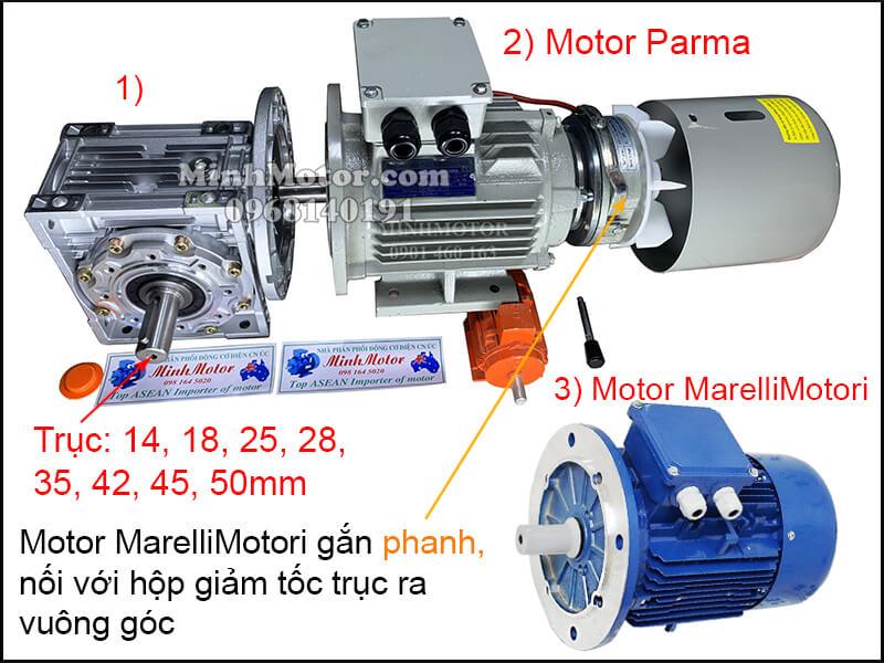 Vận hành MarelliMotori motor 3 pha 220v