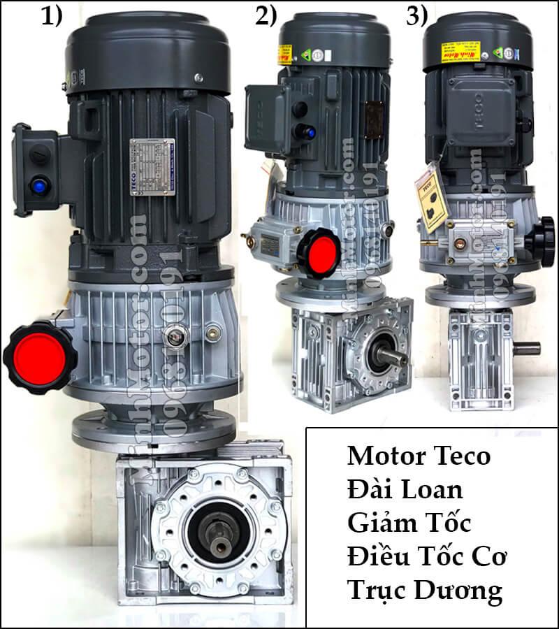 Motor Teco Đài Loan giảm tốc điều tốc cơ trục dương