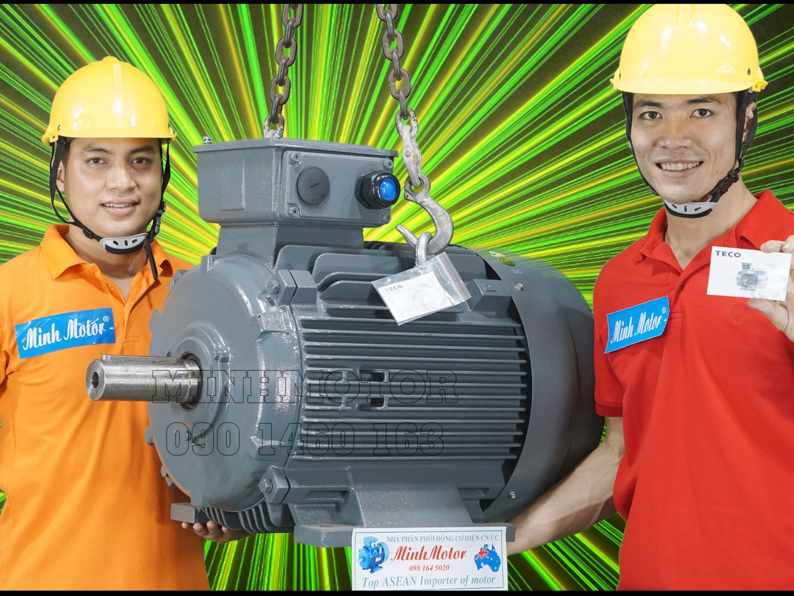 dong-co-teco-30kw