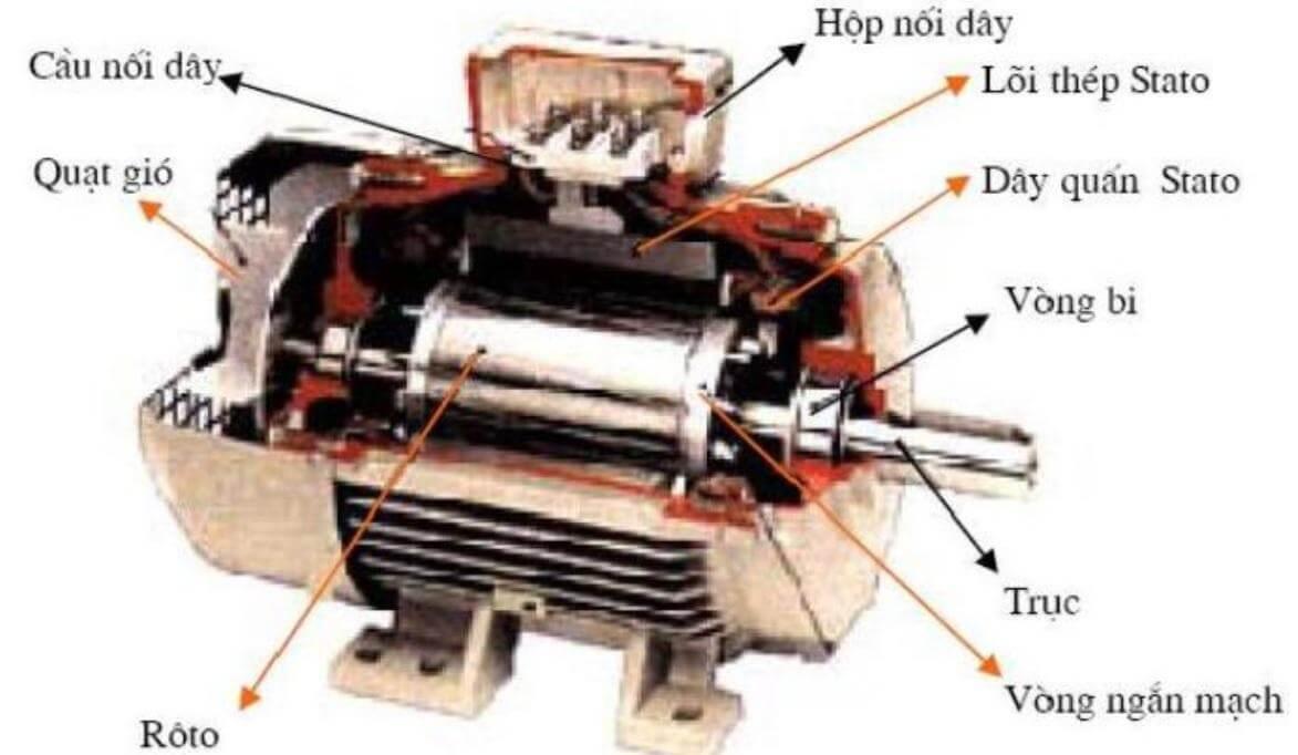Sơ đồ cấu tạo động cơ điện không đồng bộ