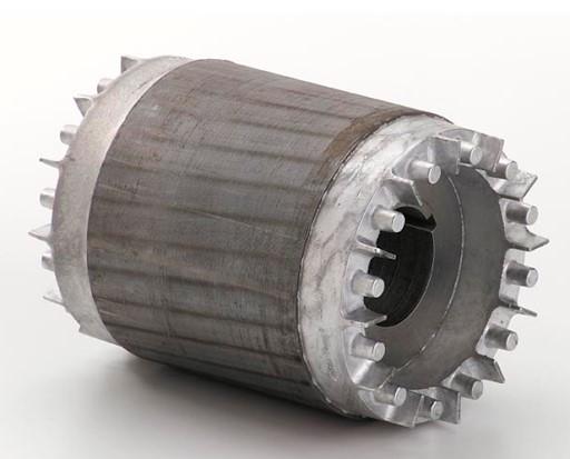 Hình ảnh của rotor lồng sóc trong động cơ