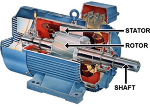 Cấu tạo motor điện 3 pha