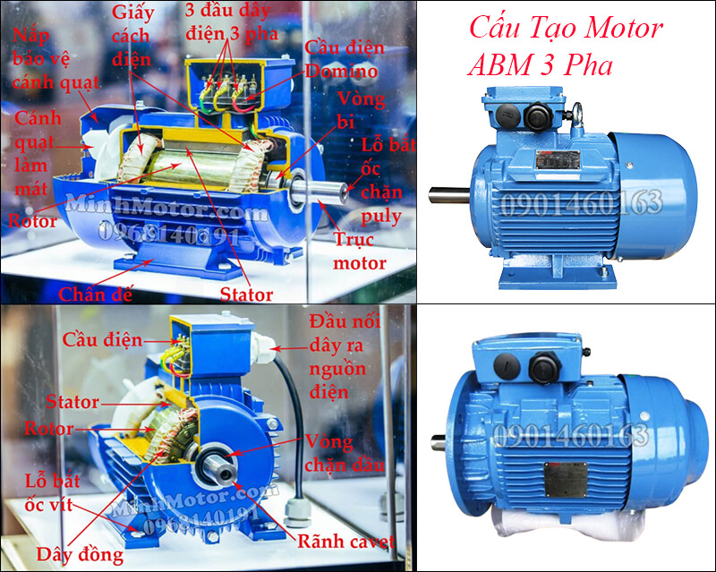 Cấu tạo motor ABM 3 pha