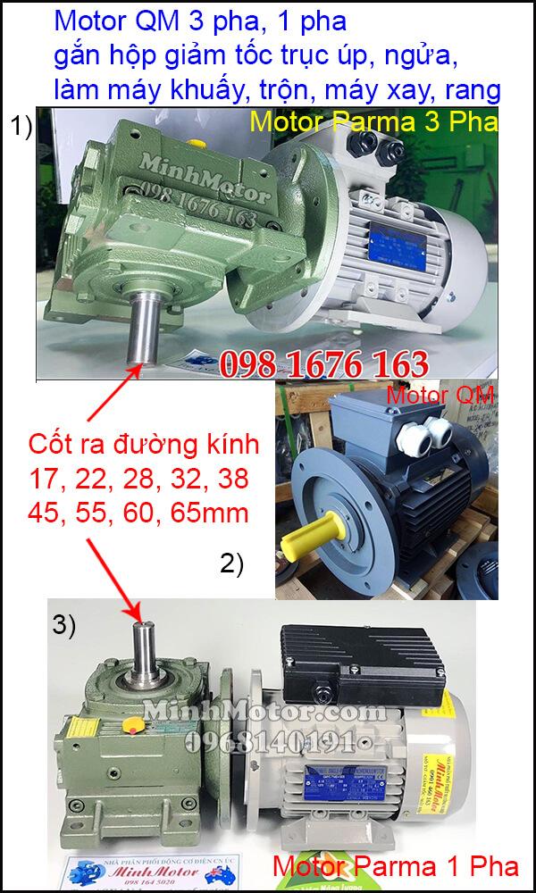 Vận hành motor QM 3 pha 220v