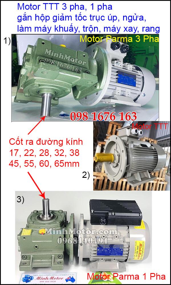Vận hành motor TTT 3 pha 220v