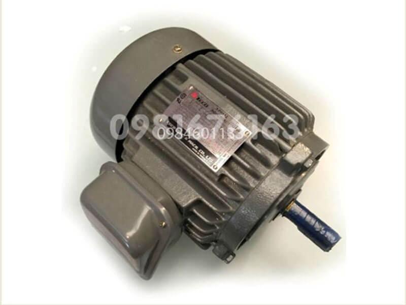 Giá motor điện teco 3 pha