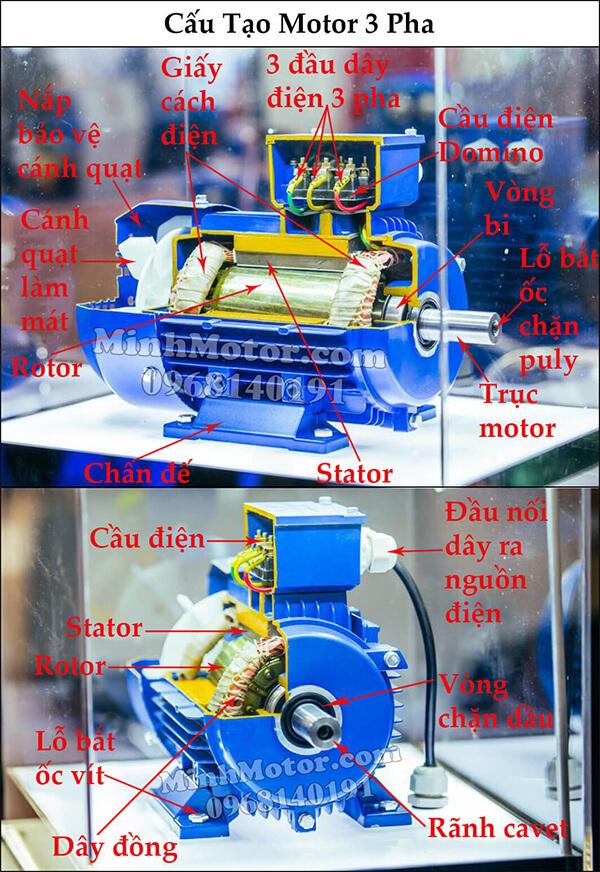 Cấu tạo motor 3 pha Parma