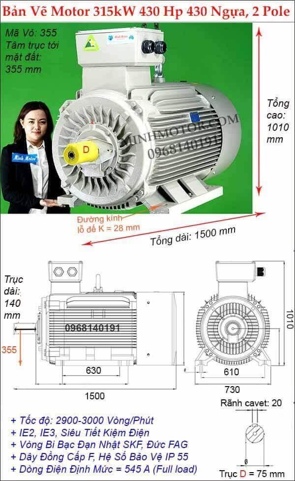Motor công suất lớn 250kw – 355kw