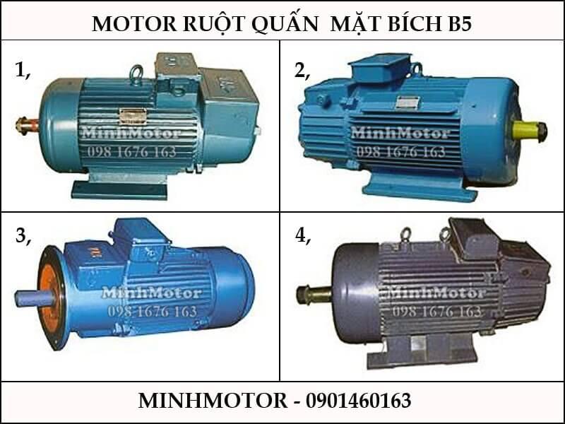 Motor Điện Đài Loan cẩu trục