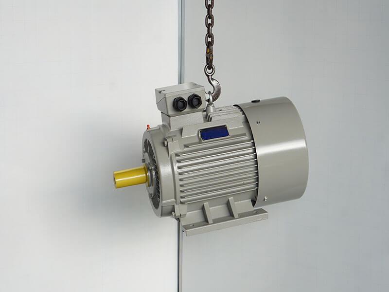 Motor điện 3 pha 10 cực điện 10 poles