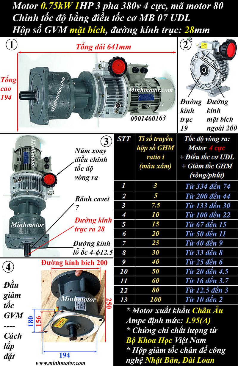 motor 3 pha 0.75Kw 1Hp trục thẳng mặt bích