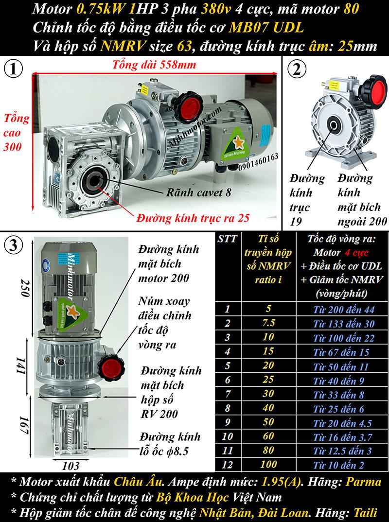 Motor điều chỉnh tốc độ 0.75Kw 1Hp cốt trục ngang NMRV size 63