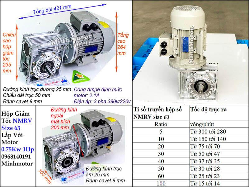 Hộp giảm tốc nmrv size 63 lắp với motor 0.75kw 1HP