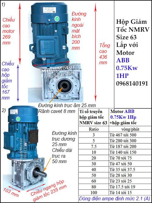 Motor hộp số ABB 1Hp 0.75Kw NMRV 63 trục âm dương lắp thẳng đứng