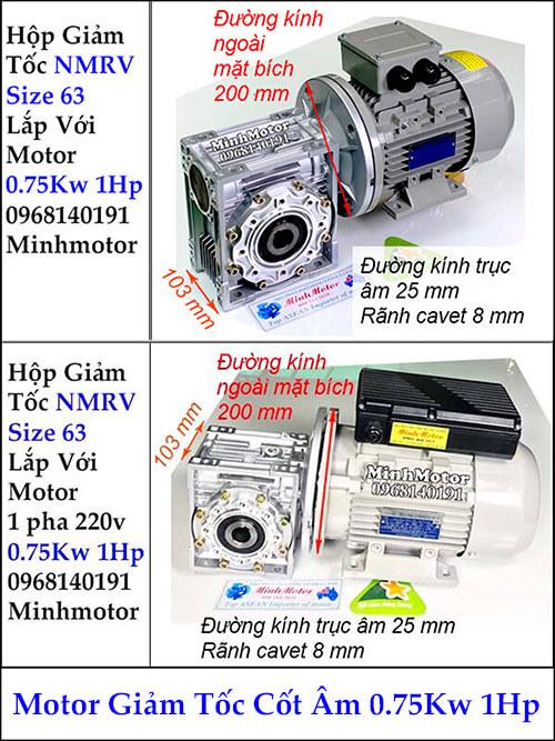 Motor hộp giảm tốc cốt âm 0.75Kw 1Hp RV size 63