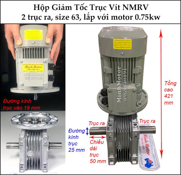 Hộp giảm tốc 2 đầu ra motor 0.75kw NMRV 63
