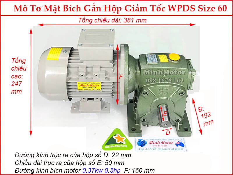 Bản vẽ kỹ thuật motor liền hộp giảm tốc mặt bích WPDS size 60