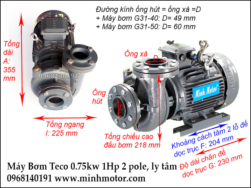 máy bơm nước teco 0.75kw 1hp