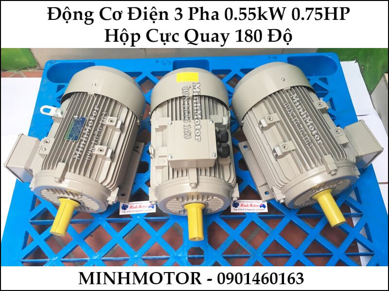 Động cơ điện 3 pha 0.55kw 0.75Hp hộp cực quay 180 độ