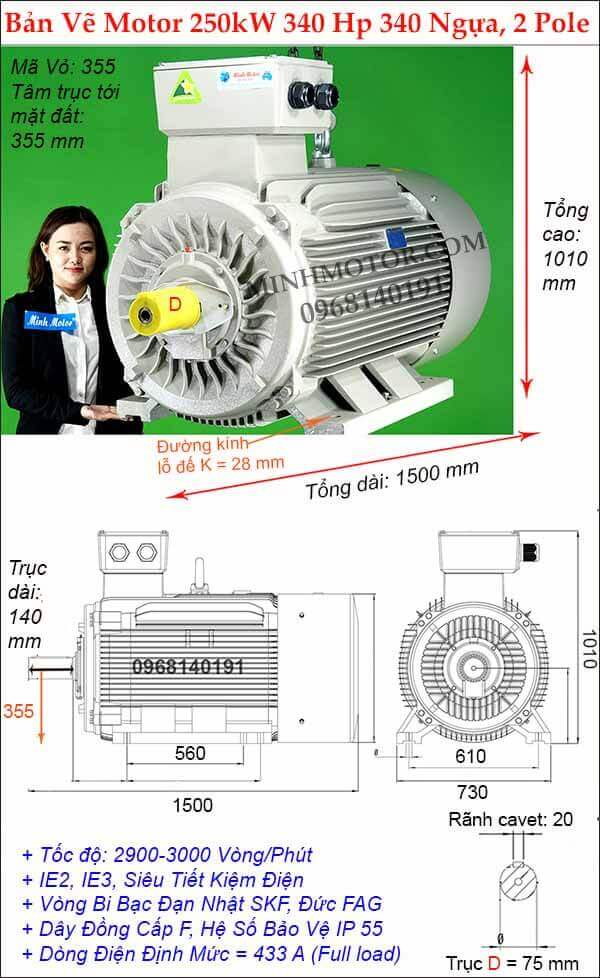 Thông số hình học động cơ điện 3 pha 340Hp 250kw chân đế, 2 Pole
