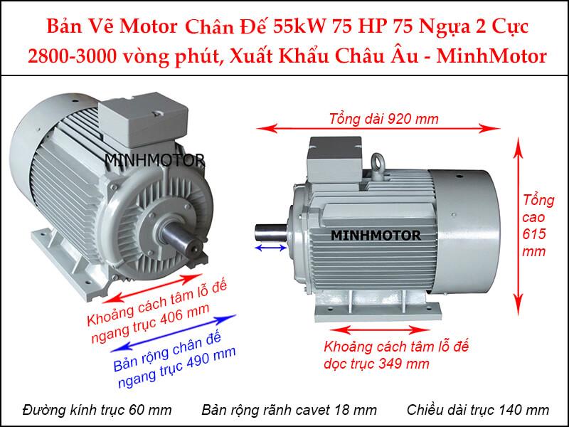 Bản vẽ motor chân đế 55kW 75Hp 75 Ngựa 2 cực