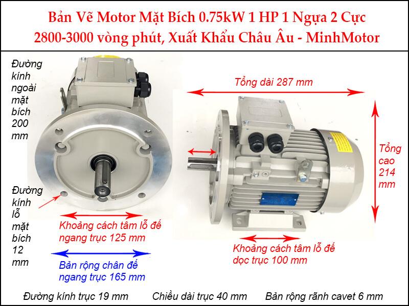 Bản vẽ motor mặt bích 0.75kW 1Hp 1 Ngựa 2 Cực