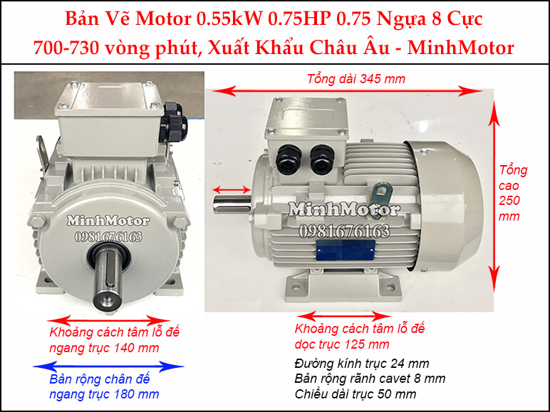 Motor điện 0.75Hp 0.55kw 8pole chân đế
