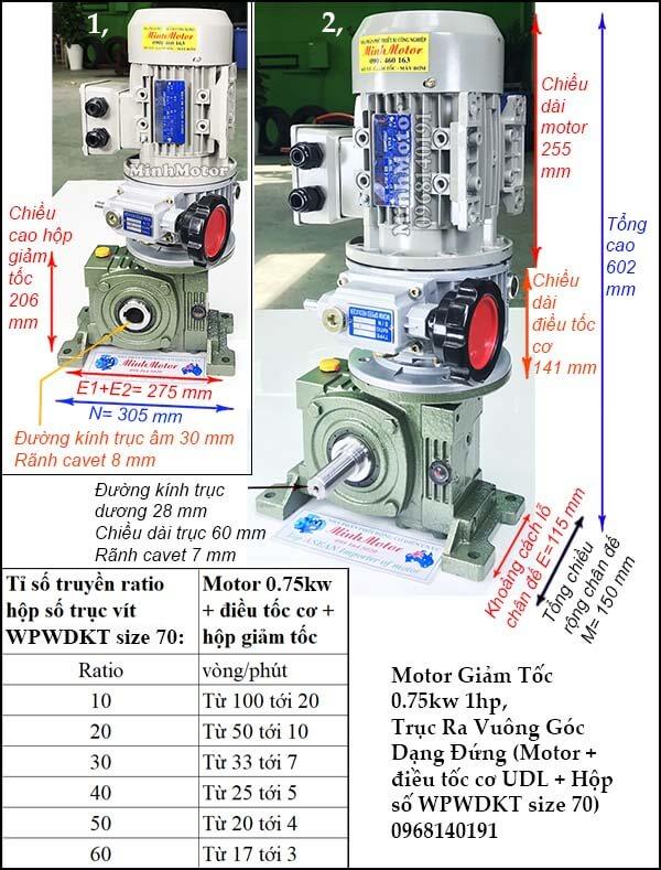 Motor điều chỉnh tốc độ 0.75Kw 1Hp cốt trục ngang WPWDKT size 70