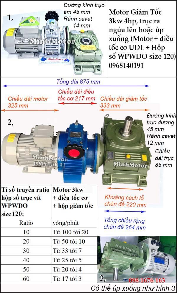 Motor điều chỉnh tốc độ 3Kw 4Hp hộp giảm tốc cốt trục ngang WPWDO size 120